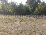 Lot for Lease in Tayud, Consolacion