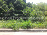 Lots for Sale in Greenwoods Subdivision, Talamban